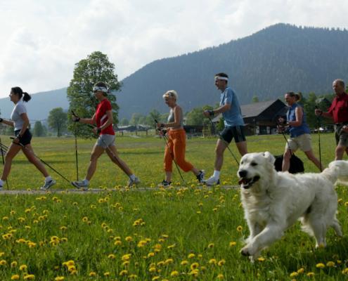 Nordic Walking im Sommerurlaub