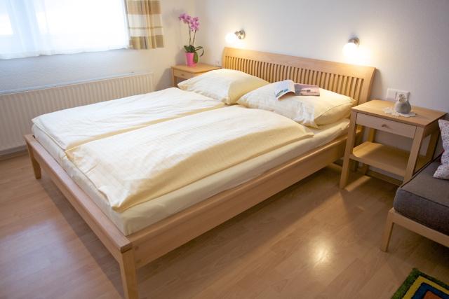 Schlafzimmer Grüne Erde Ameise