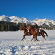 Reiten auch im Winterurlaub